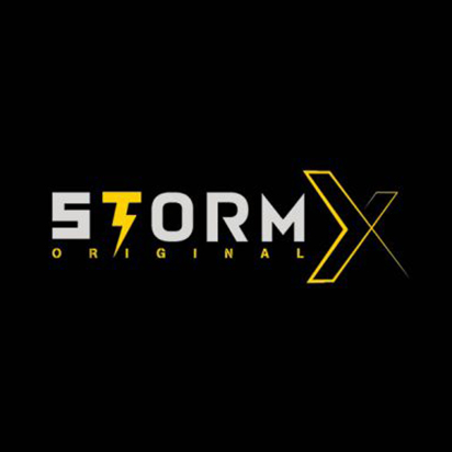 logo for Storm X