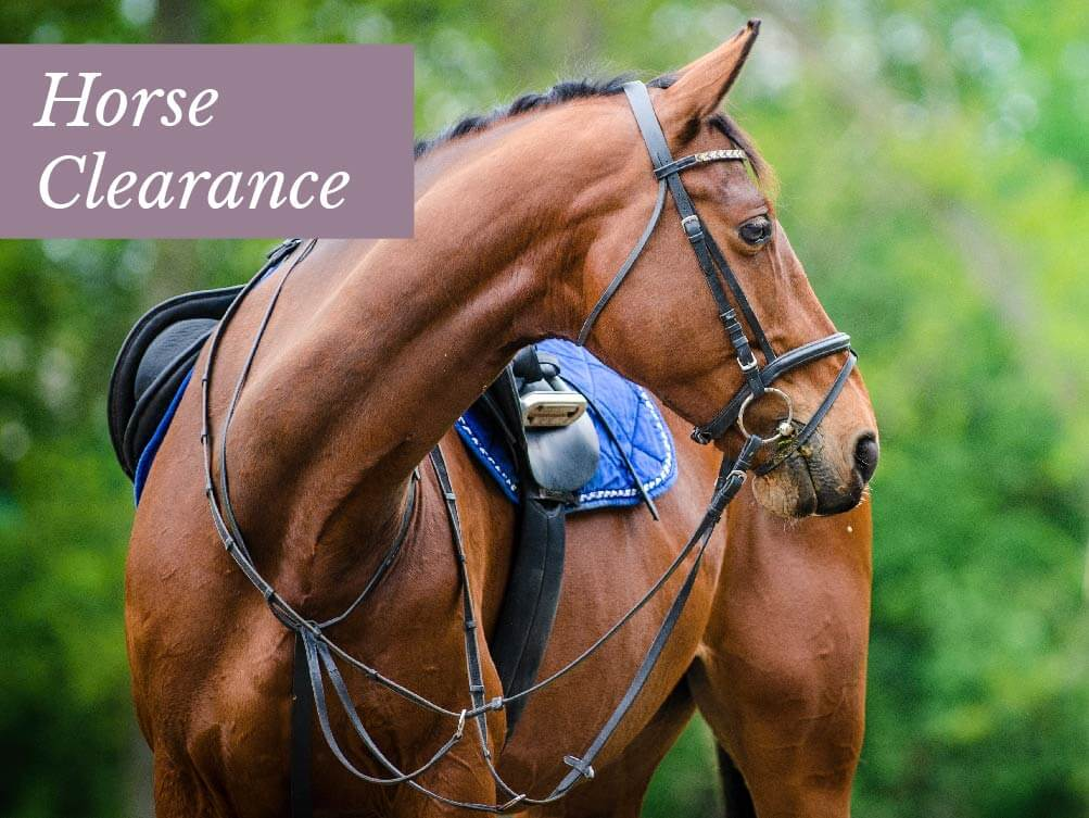 Horse Clearance