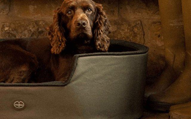 Dog Beds Dog Beds SS21