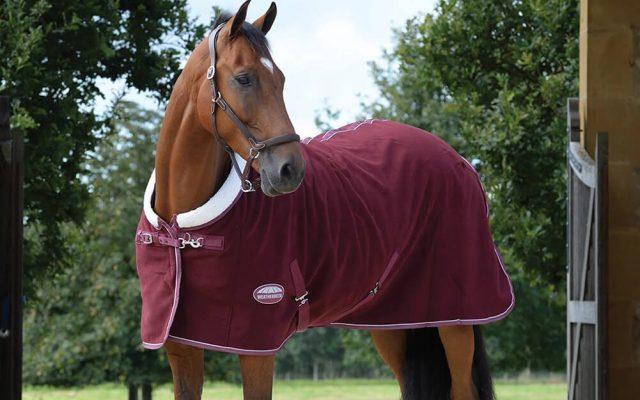 Horse Blankets Horse-Blanket-SS21