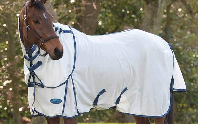 Horse-Blanket-SS21