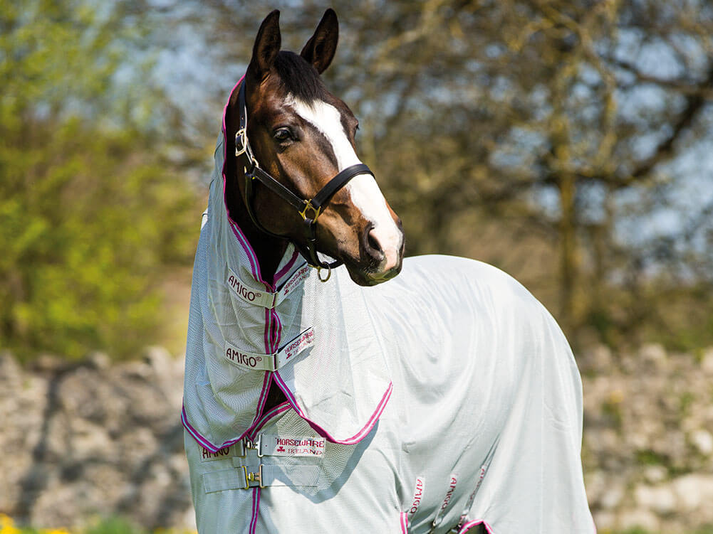 horse-lifestyle SS21
