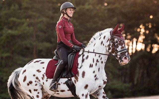 Horse Saddle Pads & Numnahs Horse Saddle Pads