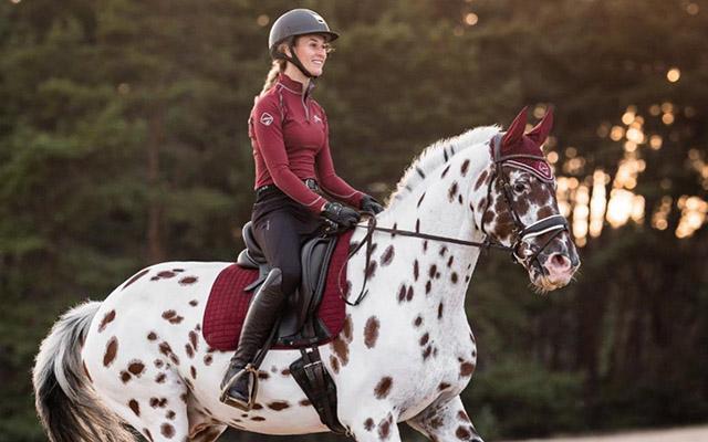 Horse Saddle Pads
