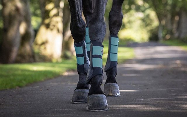 Horse Boots & Bandages Horse-Blanket-SS21