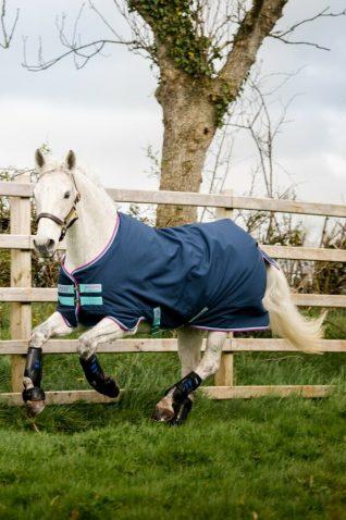image of Horseware Amigo Hero 900 Pony Turnout 0g