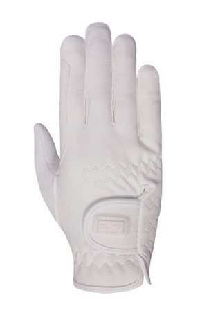 image of Mark Todd Pro Touch Winter Gloves