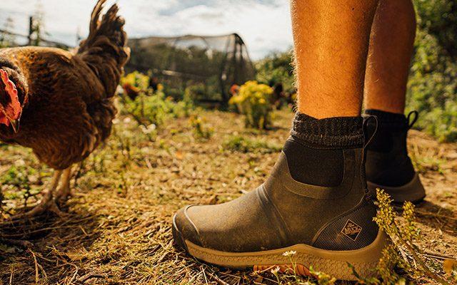 Men's Footwear mens footwear